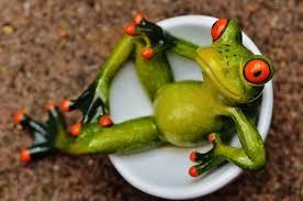 con ếch.jpg
