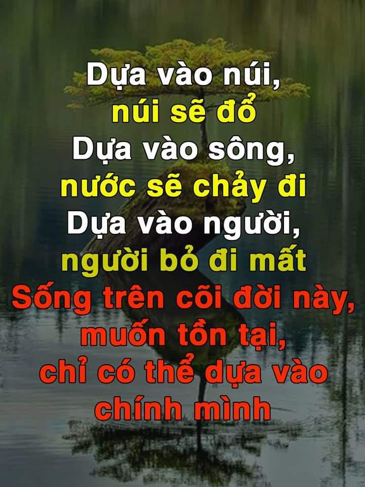 FB_IMG_1544875617625.jpg