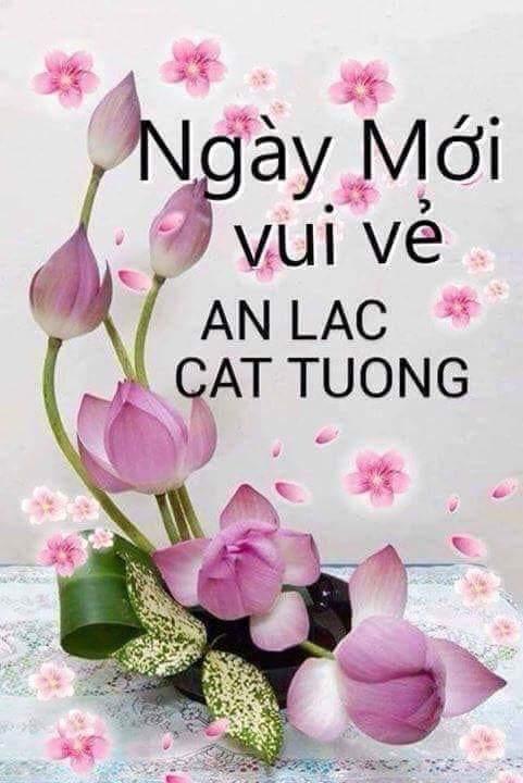FB_IMG_1554857800113.jpg