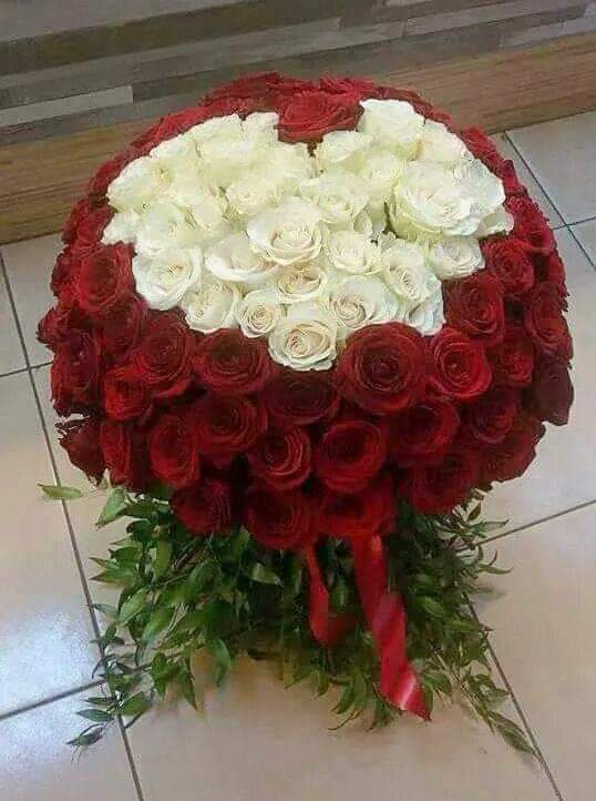 FB_IMG_1571664578831.jpg