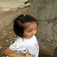 phamthai4078