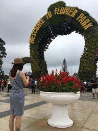 Thu Phai