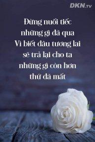 Nguyen luom